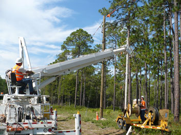 electric cooperative insurance